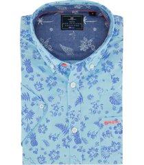lichtblauw shirt new zealand wapiti