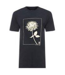 camiseta masculina botany solarização detting - azul