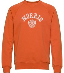 corby sweatshirt sweat-shirt trui oranje morris