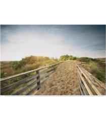 """adam mead first landing dunes iii canvas art - 15"""" x 20"""""""