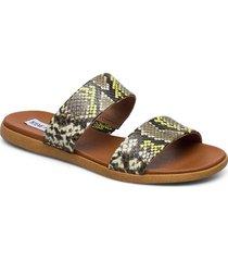 dual sandal shoes summer shoes flat sandals silver steve madden