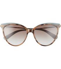 longchamp 55mm gradient cat eye sunglasses in havana nordic/brown azure at nordstrom