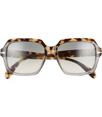 women's persol 54mm square sunglasses - brown tort/clear gradient