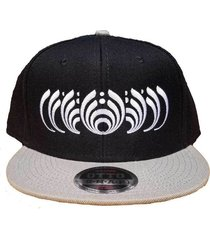 phases of the bassdrop bassnectar l.e. snapback hat headspace grassroots heady
