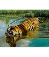 "pip mcgarry in the swim canvas art - 20"" x 25"""
