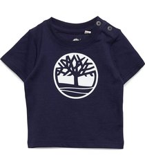 short sleeves tee-shirt t-shirts short-sleeved blå timberland