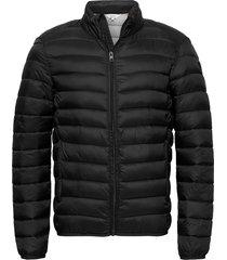 6209620, jacket - sdhailie fodrad jacka svart solid