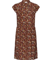 cesena sleeveless dress jurk knielengte bruin minus