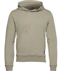 dilston hoodie trui grijs tiger of sweden