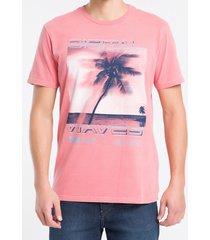 camiseta mc regular silk meia pig gc - vermelho - pp