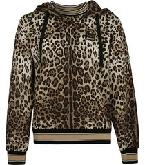 dolce & gabbana animalier print stripe trimmed hooded sweatshirt