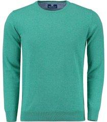 pullover trui rince groen
