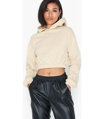 nly trend cozy cropped hoodie sweatshirts