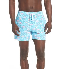 chubbies domingos flamingos 5.5-inch swim trunks, size large in bright blue at nordstrom