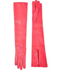 alexander mcqueen gloves