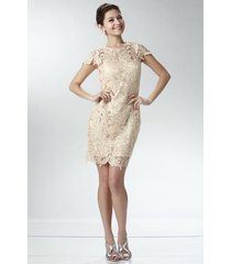 elegant chic lace lined dress, wedding cocktail club party, champagne ivory