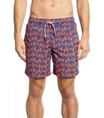 men's tom & teddy turtle print swim trunks, size x-large - blue