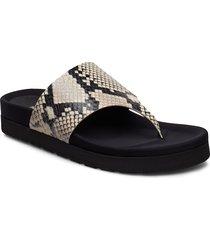 courtney plateau shoes summer shoes flat sandals svart henry kole