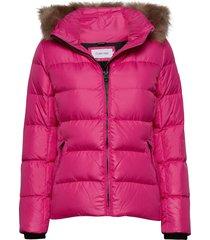 essential real down jacket gevoerd jack roze calvin klein