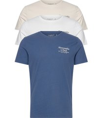 mens graphics t-shirts short-sleeved blå abercrombie & fitch