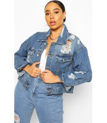 plus super distressed jean jacket, mid blue