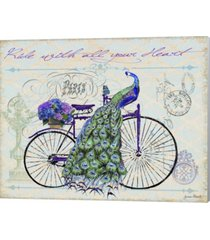 peacock on bicylce iii by jean plout canvas art