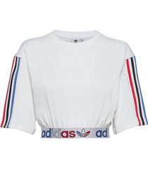 adicolor primeblue tricolor cropped t-shirt w crop tops vit adidas originals