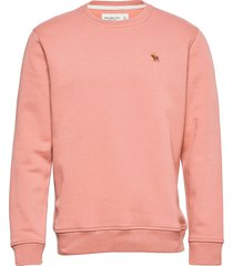 anf mens sweatshirts sweat-shirt tröja rosa abercrombie & fitch