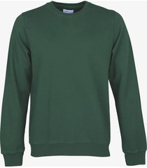 colourful standard pullover - slim fit -groen