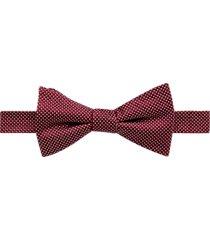 nautica burgundy dot pre-tied bow tie