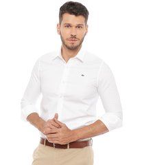 camisa lacoste casual blanco - calce regular