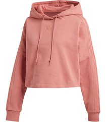 sweatshirt cropped hood