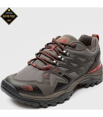 zapatilla m hedgehog fastpack gtx marrón the north face