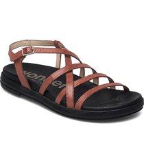 b-7412 pergamena shoes summer shoes flat sandals brun wonders