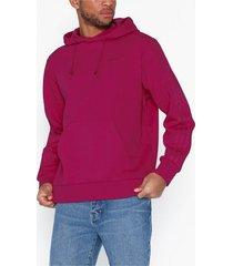 adidas originals wntrzd hoodie tröjor rosa