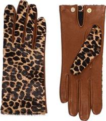 agnelle chloe leopard-print gloves - brown