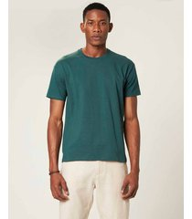 camiseta tradicional malha malwee verde escuro - g
