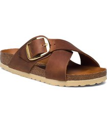 siena big buckle shoes summer shoes flat sandals brun birkenstock