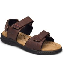 hapsford creek shoes summer shoes sandals brun clarks