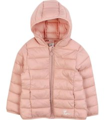 parka day to day rosadoclaro ficcus