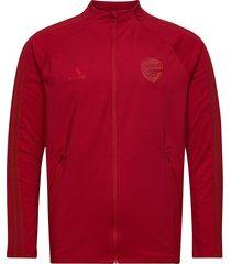 arsenal anthem jacket outerwear sport jackets röd adidas performance
