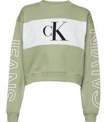 blocking satement logo crew neck sweat-shirt trui groen calvin klein jeans