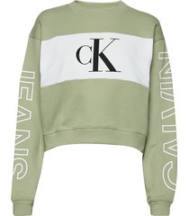 blocking satement logo crew neck sweat-shirt trui groen calvin klein jeans