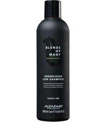 alfaparf blends of many energizing low - shampoo 250ml