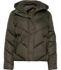 catjasz short jacket fodrad jacka grön saint tropez