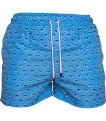 pantaloneta de baño azul regata beachwear choco