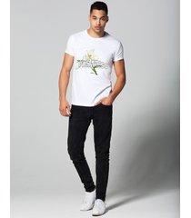 t-shirt paradiso
