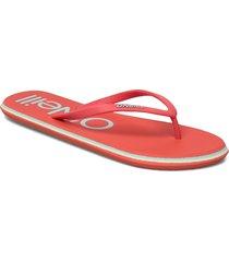 fw profile logo sandals shoes summer shoes flip flops rosa o'neill