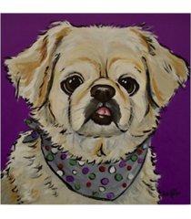 "hippie hound studios pekinese bandana canvas art - 15"" x 20"""