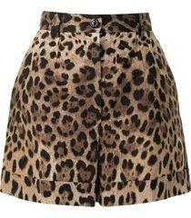 dolce & gabbana leopard-print tailored shorts - brown